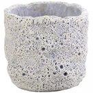 distelroos-PTMD-663385-Moonrock-purple-Cement-round-pot-xs