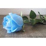 PTMD - Flower Imita single rose open