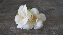 PTMD - Flower Imita crème Mini