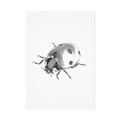 Mélisse - Kaart Het lieveheersbeestje
