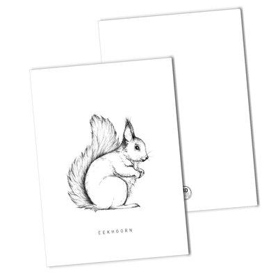BDdesigns - Kaart Eekhoorn