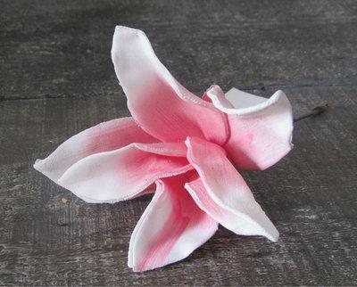 Monique van Alst - Magnolia roze/wit