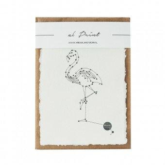 Animaal Amsterdam - Flamingo print