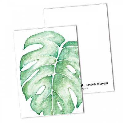 BDdesigns - Kaart Monstera