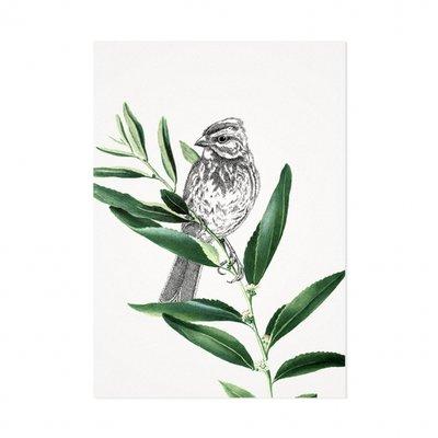 Mélisse - Kaart De donsspecht op blad