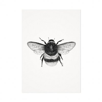 Mélisse - Kaart De honingbij