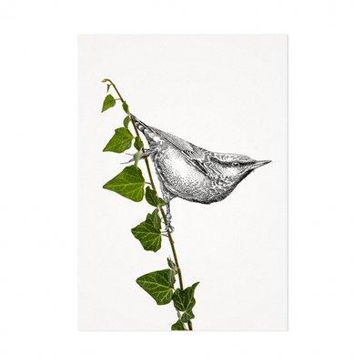Mélisse - Kaart De boomklever