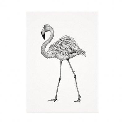 Mélisse - Kaart De rode flamingo