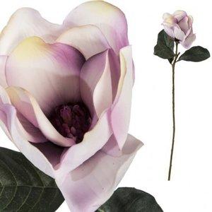 distelroos-PTMD-668666-Kunstbloem-Magnolia